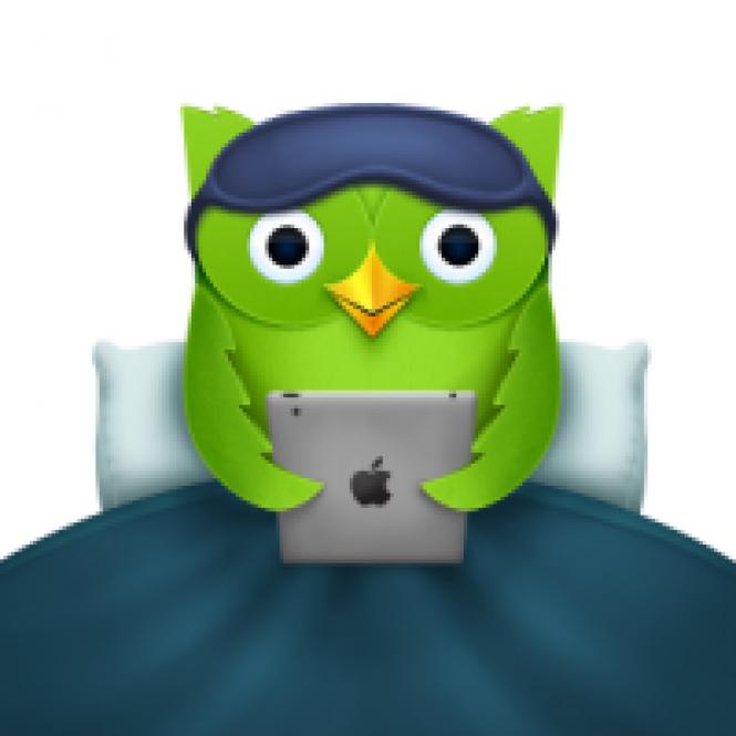 Duolingo Is Finally For All Platforms