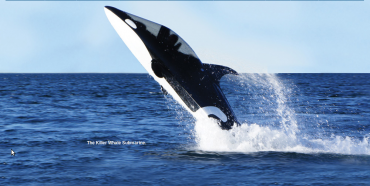 Hammacher Schlemmer: Free Willy!